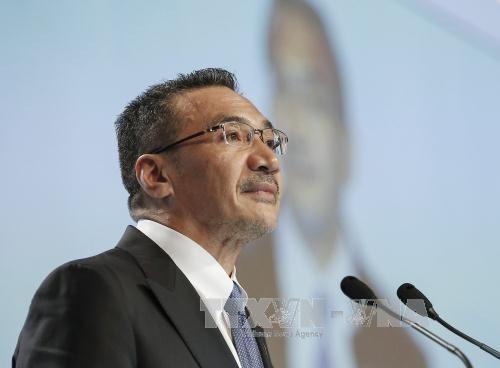 Mer Orientale: l'Indonésie et la Malaisie appellent les parties en présence à observer le droit international - ảnh 1