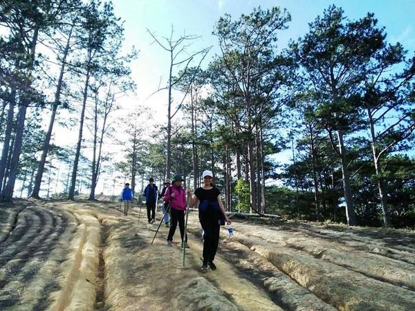 Faire le trek Tà Nang - Phan Dung - ảnh 2