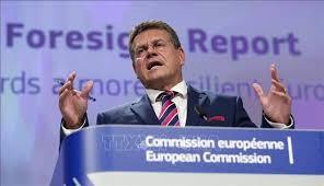 La Commission européenne dévoile son tout premier rapport de prospective stratégique - ảnh 1