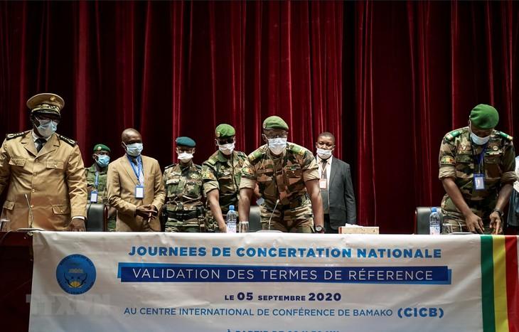 La CEDEAO appelle à une résolution rapide de la crise politique au Mali - ảnh 1
