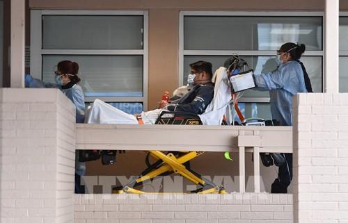 Coronavirus dans le monde: 10.000 morts en Belgique - ảnh 1
