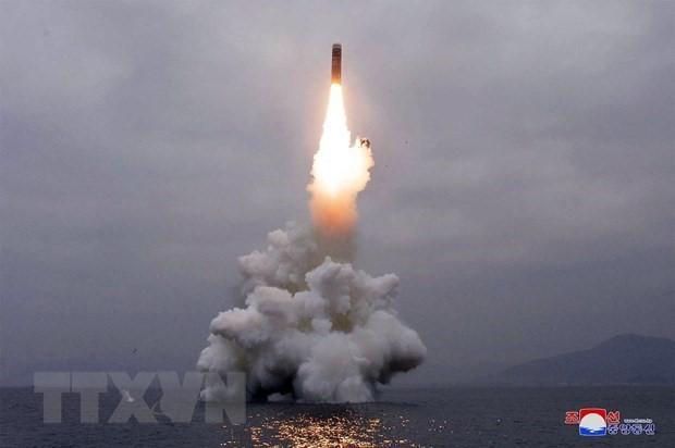 Pyongyang a tiré dimanche 2 missiles de croisière vers la mer Jaune - ảnh 1
