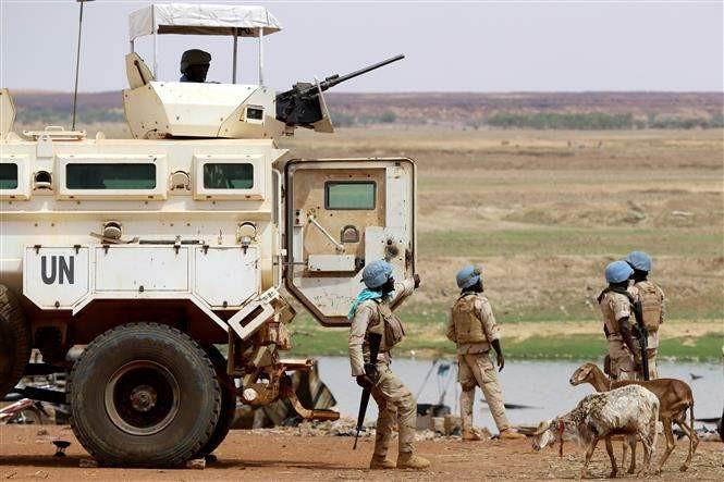 Le Conseil de sécurité de l'ONU condamne l'attaque contre des Casques bleus au Mali - ảnh 1