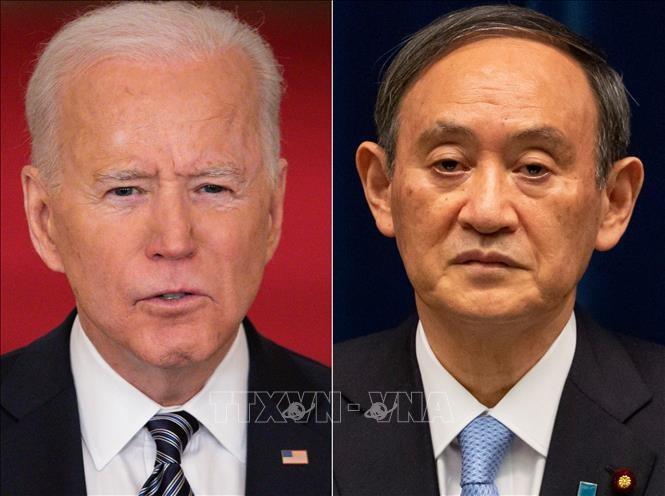 Joe Biden et Suga Yoshihide montrent leur unité - ảnh 1