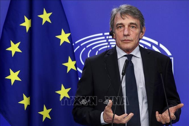 La Russie sanctionne huit responsables européens en riposte aux sanctions de l'UE - ảnh 1