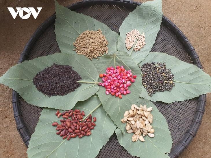L'insecticide traditionnel des Dao rouges - ảnh 1