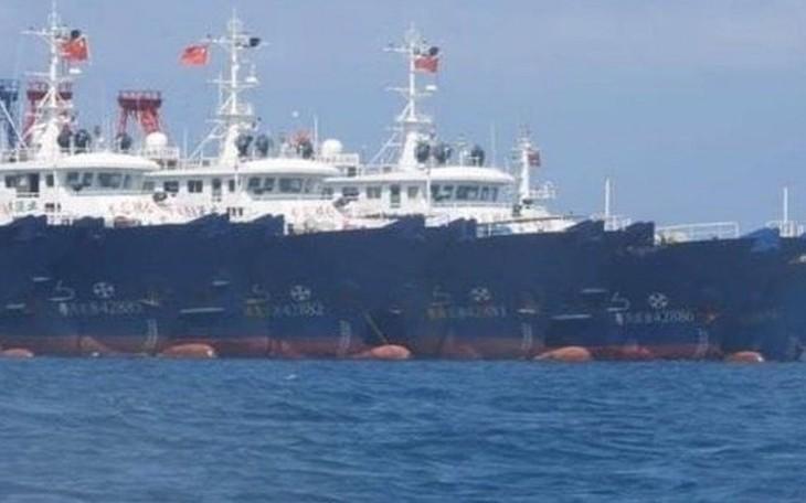 Mer Orientale: les Philippines ignorent l'interdiction de pêche de la Chine - ảnh 1