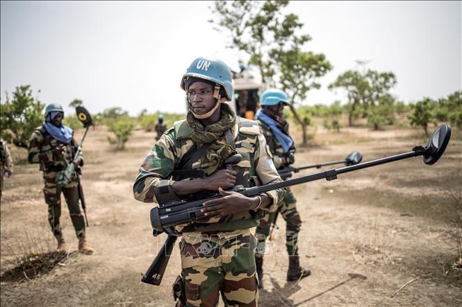 Mali: Guterres demande au Conseil de sécurité de renforcer la Minusma - ảnh 1