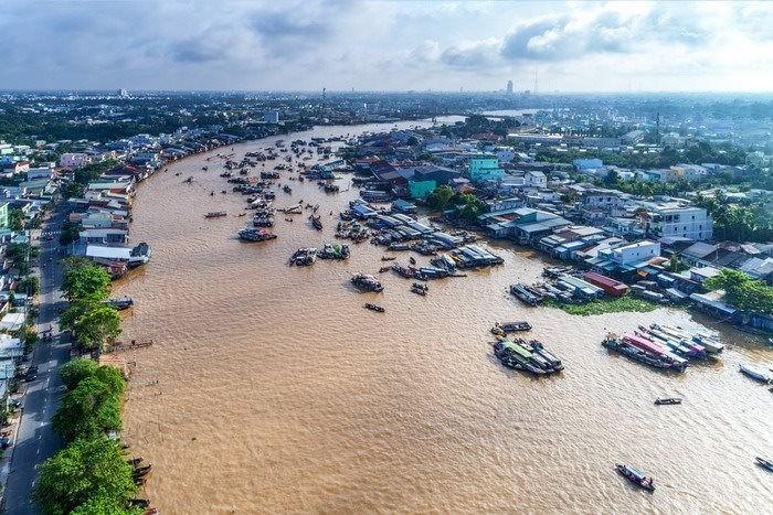 Visioconférence sur la gestion des ressources naturelles et de l'environnement dans le delta du Mékong - ảnh 1