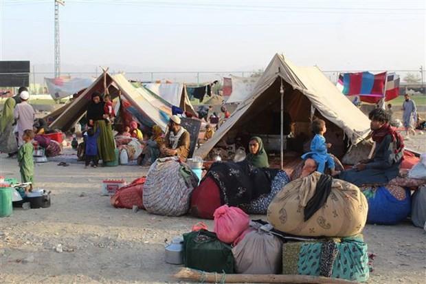 Afghanistan: l'ONU met en garde contre l'effondrement de l'économie et du système de santé  - ảnh 1