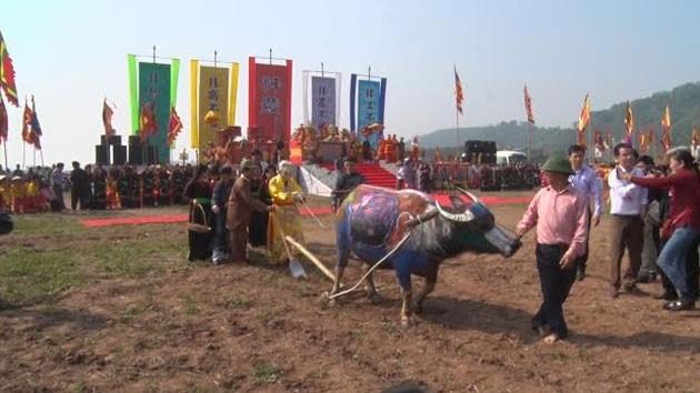 В провинции Ханам открылся праздник начала обработки земли - ảnh 1