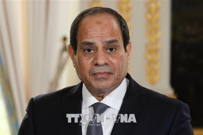 В Египте продлили чрезвычайное положение - ảnh 1