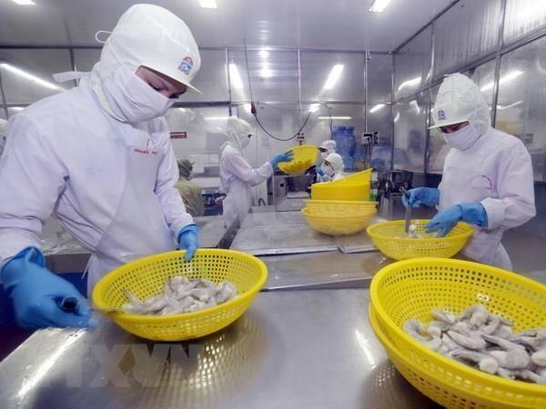 Вьетнам стремится к увеличению экспорта креветок до $4,2 млрд в 2019 году - ảnh 1