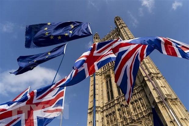 Переходный период по выходу Великобритании из ЕС завершится до 1 января 2021 года  - ảnh 1
