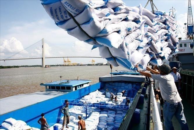 EVFTA: активизация экономического роста Вьетнама в долгосрочной перспективе - ảnh 1