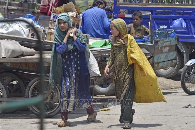 МОТ призвала правительства стран оказать помощь рабочим-мигрантам - ảnh 1