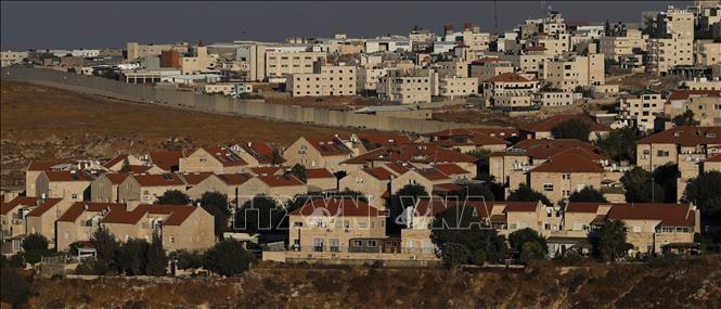 Палестина призывает сформировать международный союз, выступающий против аннексии Западного берега Иордана - ảnh 1