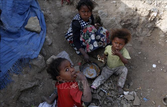 Масштабы проблемы отсутствия продовольственной безопасности в Йемене вновь вызывают большую тревогу - ảnh 1
