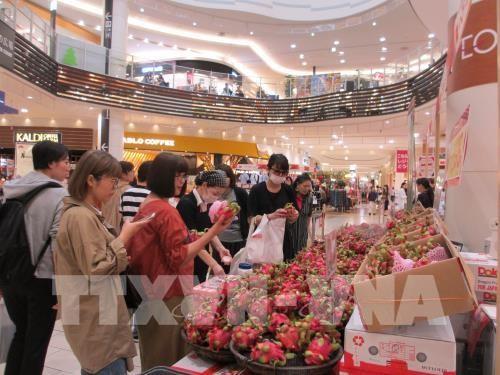 Hàng hóa Việt Nam tăng cường xâm nhập thị trường Nhật Bản - ảnh 1