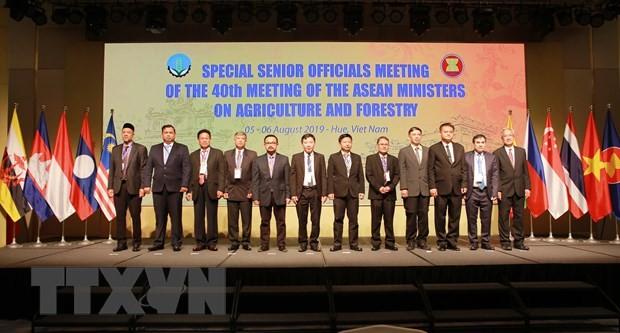 Hội nghị Đặc biệt quan chức cấp cao nông, lâm nghiệp AMAF ASEAN+3 - ảnh 1