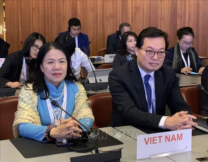 Việt Nam tích cực và chủ động tham gia Phong trào Chữ thập đỏ và Trăng lưỡi liềm đỏ quốc tế - ảnh 1