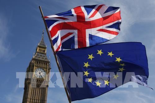 Quan hệ Anh - EU thời kỳ hậu Brexit: từ đối tác đến đối thủ - ảnh 1