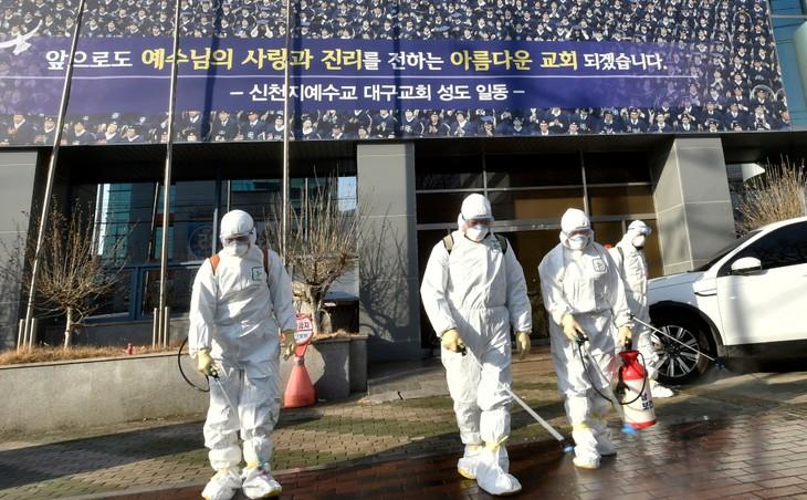 Triển khai các biện pháp bảo hộ công dân Việt Nam tại Hàn Quốc - ảnh 1
