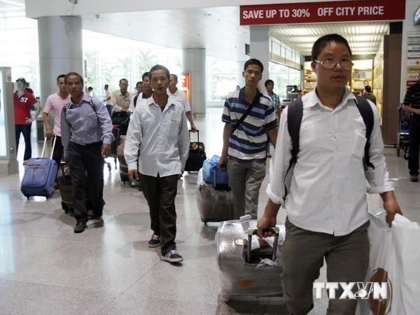Dừng đưa lao động Việt Nam đi làm việc tại vùng có dịch COVID-19 - ảnh 1