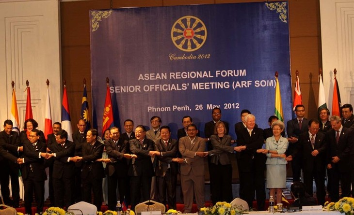 Konferensi  pejabat  tinggi ASEAN- India  mengarah ke  kerjasama  - ảnh 1