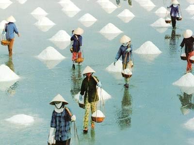 Membangun ekonomi kelautan Vietnam - ảnh 4