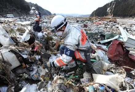 Amerika Serikat  dan Jepang mengadakan perundingan tentang Perjanjian Pengelolaan Lingkungan Hidup - ảnh 1