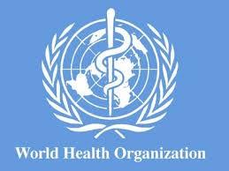 WHO: Akan terjadi eksplosi wabah Ebola kalau tidak bertindak gigih - ảnh 1