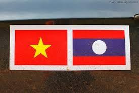 Sekjen, Presiden Laos menerima delegasi Departement Hubungan Luar Negeri Partai Komunis Vietnam - ảnh 1