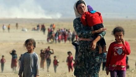 PBB memperingatkan tentang jumlah korban akibat perang di Irak - ảnh 1