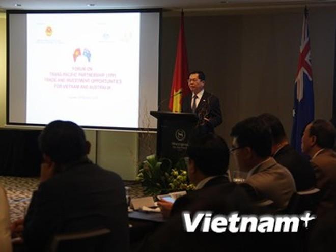 Vietnam-Selandia Baru memperhebat  kesempatan melakukan kerjasama  dan investasi - ảnh 1