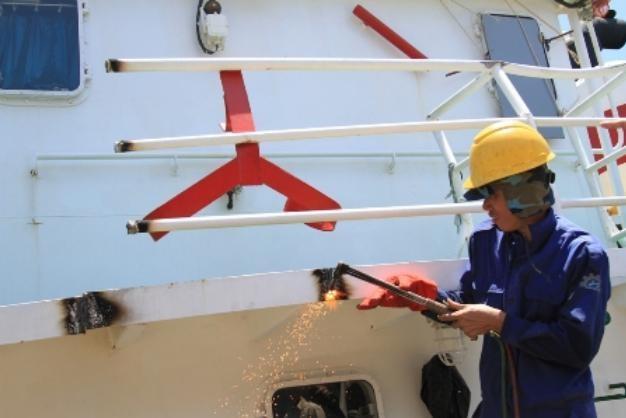 Выделение 16 трлн донгов из госбюджета на поддержку рыбаков – своевременный и правильный шаг - ảnh 1