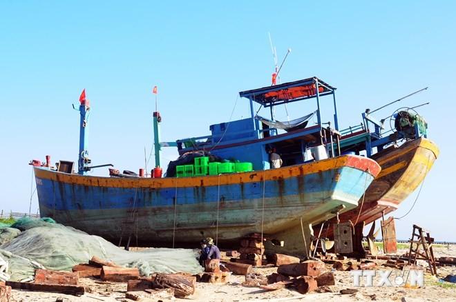 Госбанк Вьетнама окажет рыбакам своевременную помощь для продолжения промысловой деятельности в море - ảnh 1