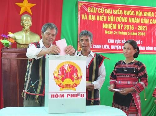 В некоторых районах Вьетнама состоялось раннее голосование - ảnh 1