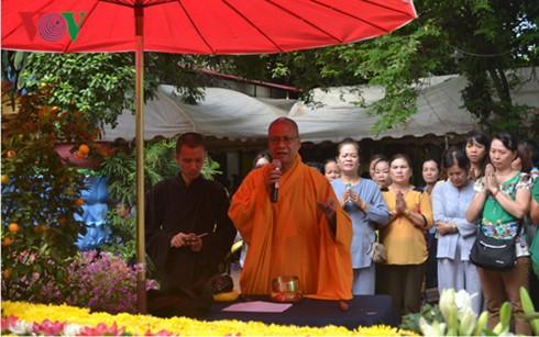 Вьетнамцы в Лаосе проявляют интерес к всеобщим выборам на Родине - ảnh 2