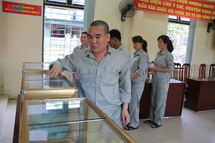 Всеобщие выборы во Вьетнаме - ảnh 11