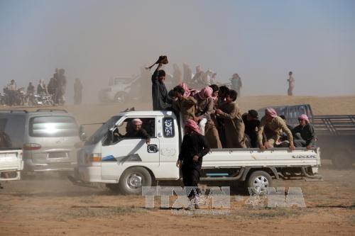 Боевики ИГ покинули сирийскую провинцию Алеппо - ảnh 1