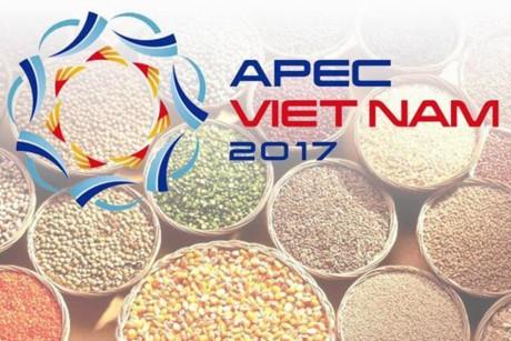 Вьетнам продолжает реализовать приоритетные направления Года АТЭС-2017 - ảnh 1