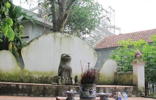 Деревня Дитьви и её традиция поклонения каменной собаке - ảnh 2