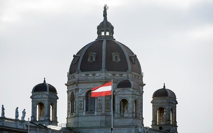 В Австрии назначили дату досрочных выборов в парламент - ảnh 1