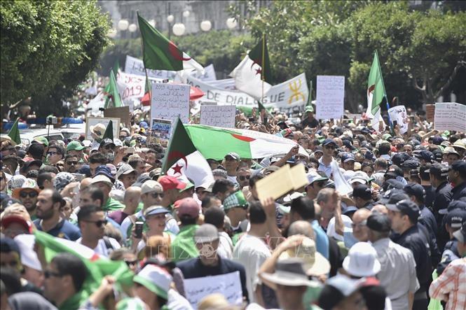 В столице Алжира проходят массовые антиправительственные протесты - ảnh 1