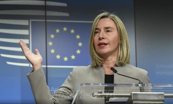 ЕС продолжает выполнять обязательства по борьбе с терроризмом в Африке - ảnh 1