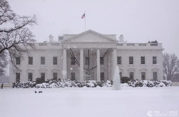 Белый дом снова отказался от участия в слушаниях по импичменту Трампа - ảnh 1