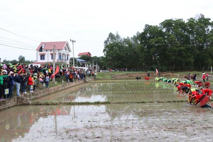 Посевные праздники в деревнях Вьетнама в начале нового года по лунному календарю - ảnh 1