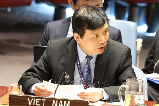 Вьетнам призывает заинтересованные стороны соблюдать режим прекращения огня в Ливии - ảnh 1