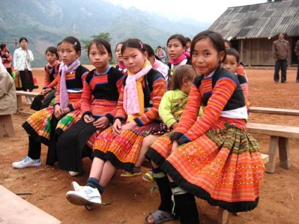 Содействие расширению прав нацменьшинств во Вьетнаме - ảnh 1